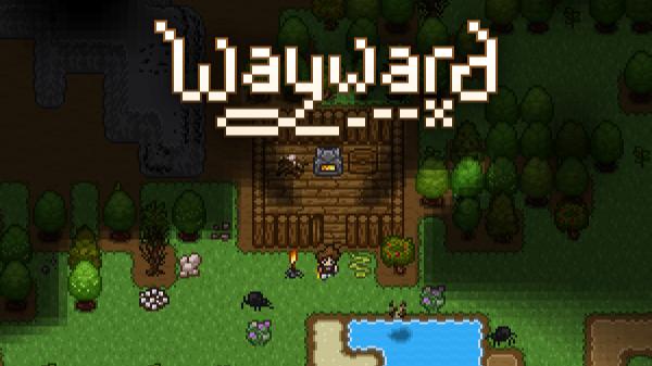 Wayward game